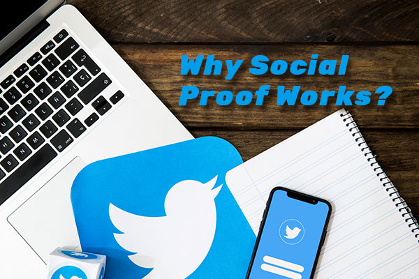 Why Social Proof Works On Buying Twitter Followers